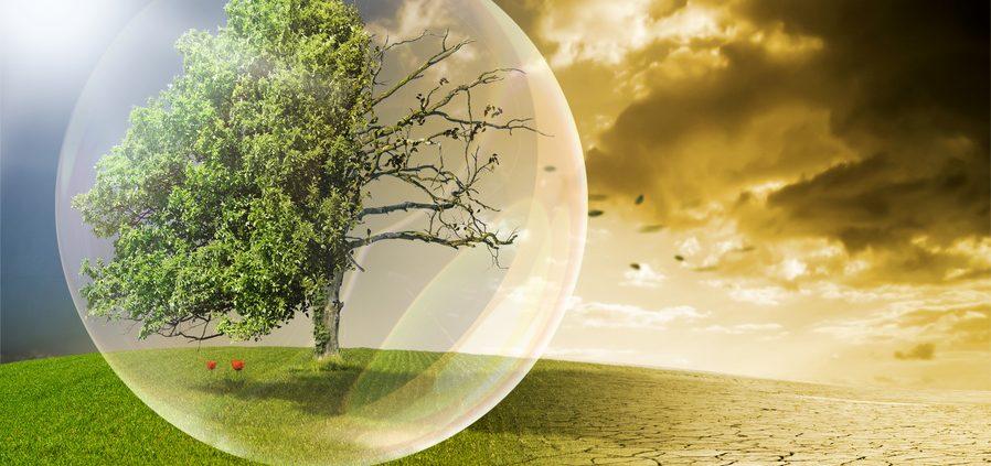 Klimaschutz mit Wurmhumus